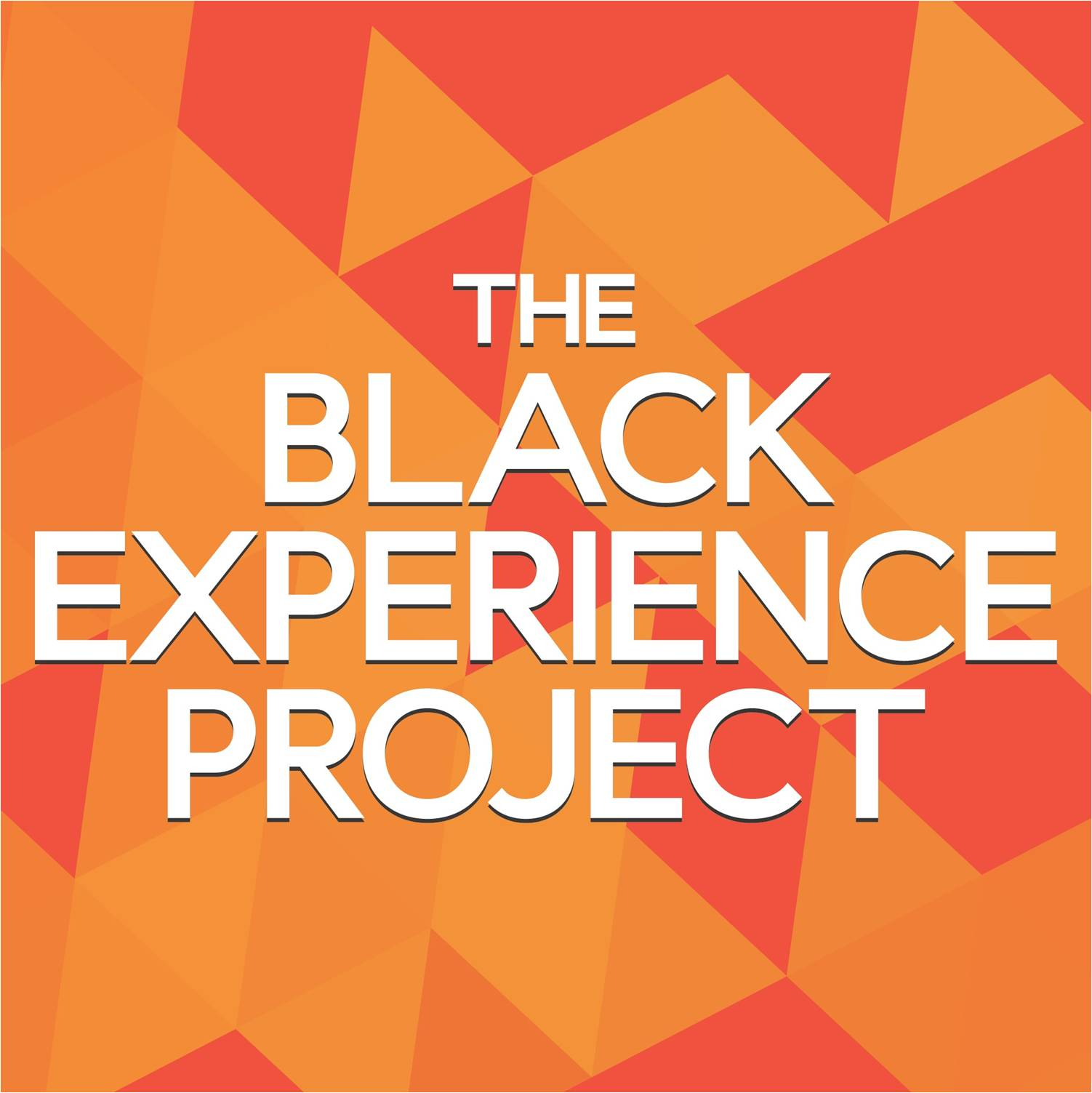 The Black Experience Project
